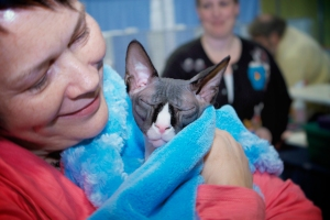 Ethel-and-her-sphynx-cat-Jaxx-cuddling-at-the-show