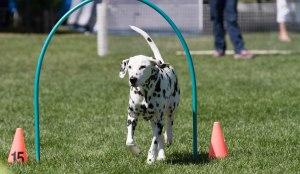 Coach-doing-hoops